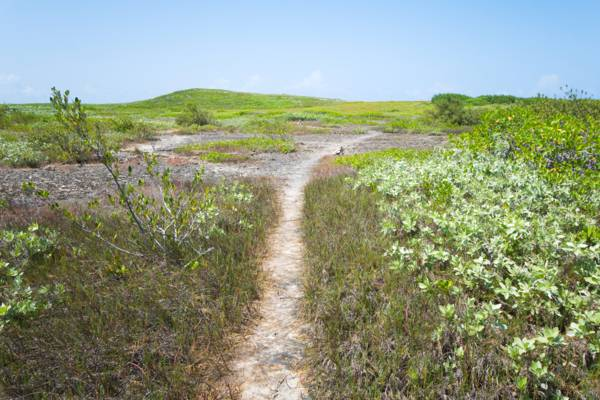 the Crossing Place Trail in the Turks and Caicos