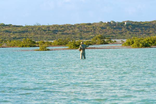 flats fishing in Turtle Lake on Providenciales