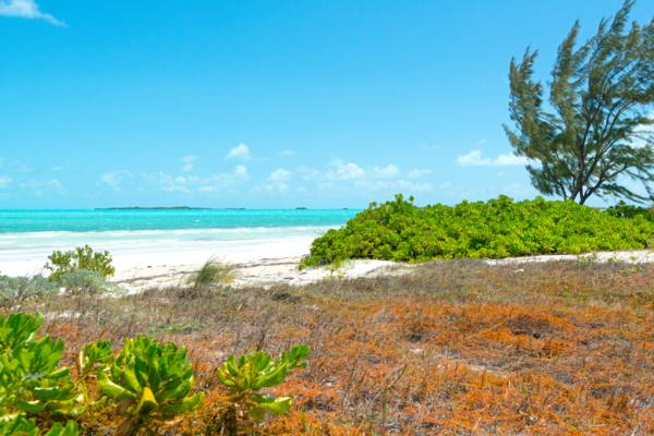 Five Cays Beach, Turks and Caicos