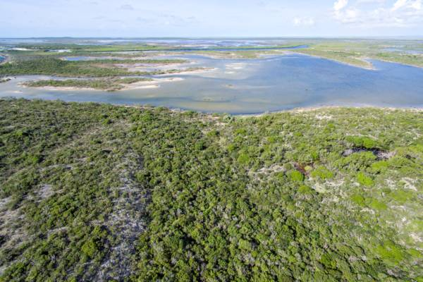 aerial view of the wetlands and tidal tundra of East Caicos and Hog Cay