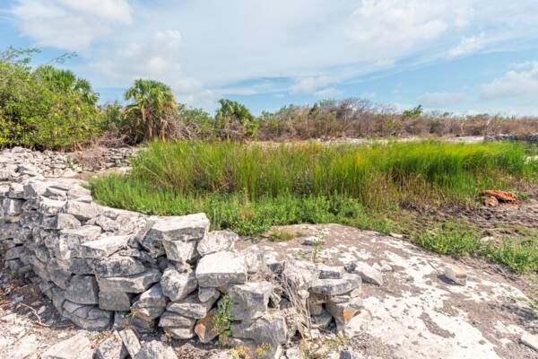 livestock well on Hog Cay