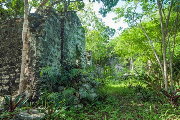 Wade's Green Plantation at Kew on North Caicos
