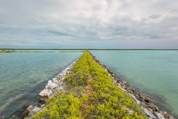 the old railroad causeway in Lake Catherine