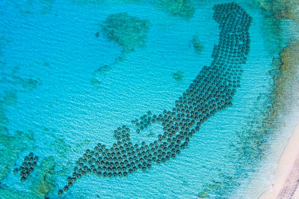 hundreds of anti-erosion concrete reef balls in the turquoise water at Malcolm's Road Beach