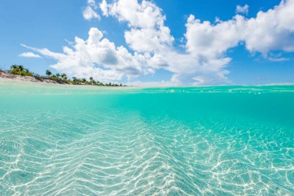 beach in the West Caicos Marine National Park