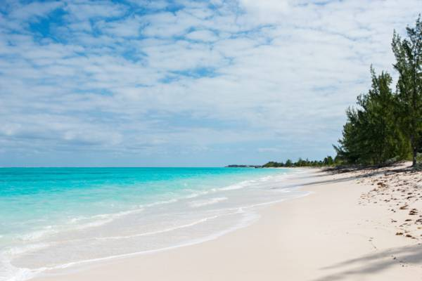 Whitby Beach in the Turks and Caicos